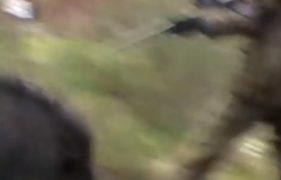 Jägare attackeras av vildsvin
