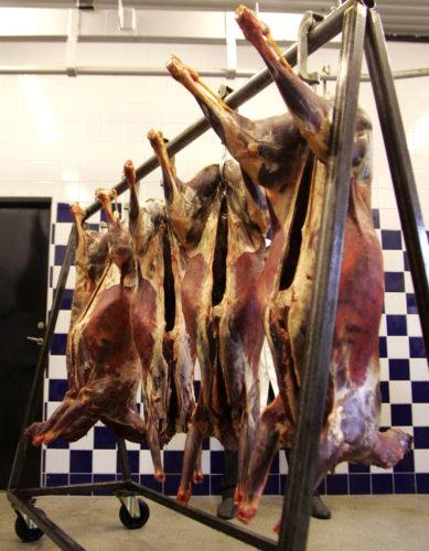 Möra-köttskolan del 3: Bäckenhänga eller inte, det är frågan