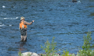 Sportfisket sätter fart på Sverige