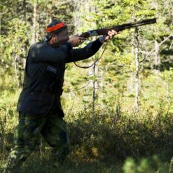 Land.se skriver om jakt.