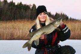Följ med experterna på hemligt isfiske – och få bästa knepen
