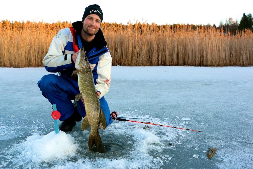 Stor fisk i liten sjö. Håkan har fått en fin fisk precis när solen nått vasstopparna.
