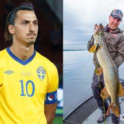 """""""Zlatan är en galet duktig fiskare"""""""