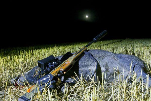 Bli nattjägare! Här är produkterna som guidar dig i mörkret