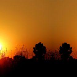 Jakt solnedgång