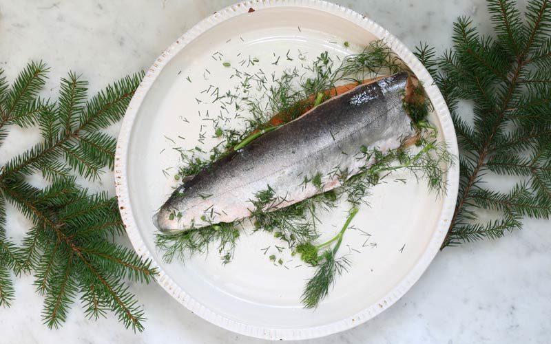 Salt - kökets grundpelare